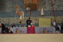 gym-finales-18-19-mars-2017-FILLES1-013