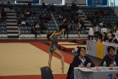 gym-finales-18-19-mars-2017-FILLES1-163