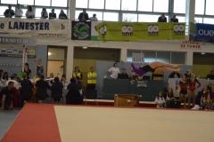 gym-finales-18-19-mars-2017-FILLES2-226