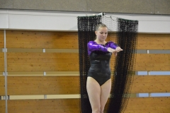 gym-finales-18-19-mars-2017-filles3-003