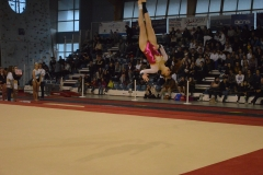gym-finales-18-19-mars-2017-filles3-066