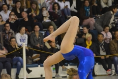 gym-finales-18-19-mars-2017-filles5-066