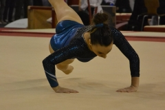 gym-finales-18-19-mars-2017-filles5-095