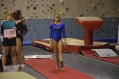gym-finales-18-19-mars-2017-filles6-008