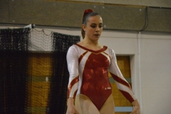 gym-finales-18-19-mars-2017-filles6-064