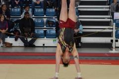 gym-finales-18-19-mars-2017-garcons3-098