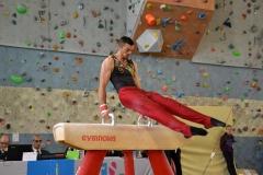 gym-finales-18-19-mars-2017-garcons3-120