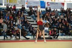 gym-finales-18-19-mars-2017-garcons3-140