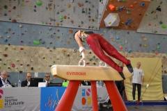 gym-finales-18-19-mars-2017-garcons3-166