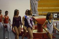 gym-finales-18-19-mars-2017-podiums-055