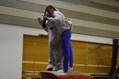 gym-finales-18-19-mars-2017-podiums-088