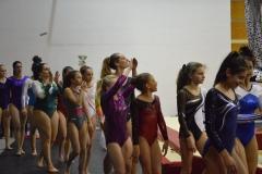 gym-finales-18-19-mars-2017-podiums-104